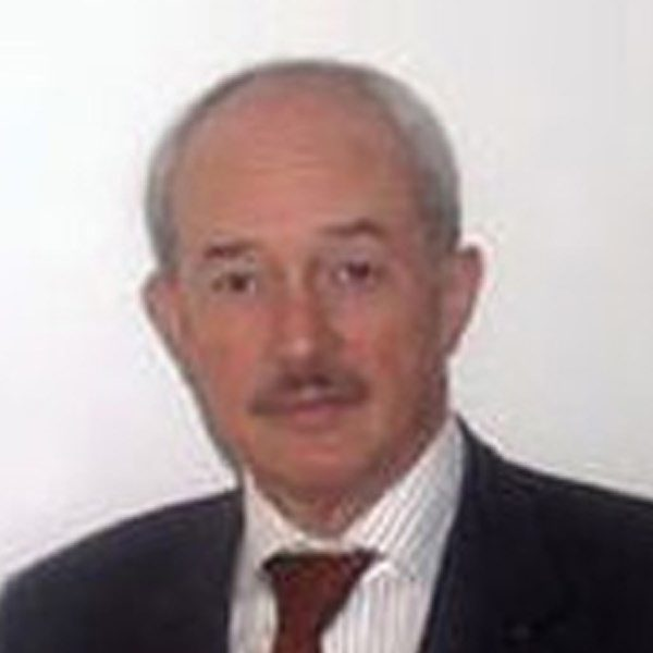 Klingsch, Wolfram, Prof. Dr.-Ing.